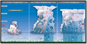 雷雨發展、成熟與消散的三個階段