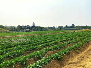 智慧農業-植保機